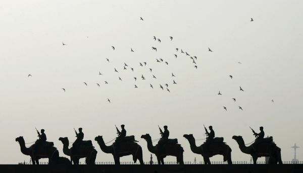 "Indian Border Security Force (BSF) soldiers ride their camels during the rehearsal for the ""Beating the Retreat"" ceremony in New Delhi January 21, 2010"