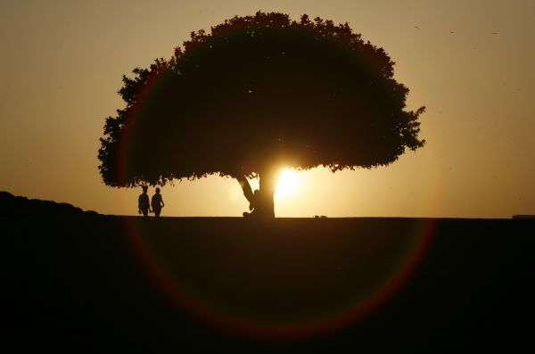 People are silhouetted against the setting sun at a park in New Delhi March 10, 2010. The lighting effect is caused by lens flare. REUTERS/B Mathur (INDIA - Tags: SOCIETY IMAGES OF THE DAY) FOR BEST QUALITY IMAGE: ALSO SEE GF2E64D1FO201