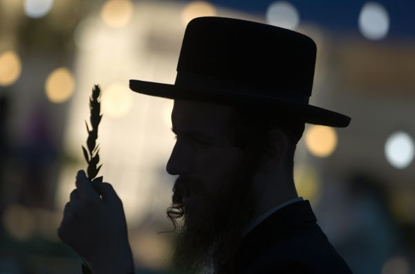 An ultra-Orthodox Jew inspects a myrtle branch for blemishes at a market in Bnei Brak near Tel Aviv September 19, 2010. The palm frond is used in rituals during the Jewish holiday of Sukkot, which begins later this week. REUTERS/Amir Cohen (ISRAEL - Tags