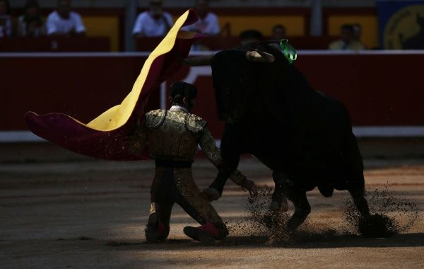Spanish bullfighter Juan Jose Padilla performs a pass to a bull on his knees during the seventh bullfight of the San Fermin festival in Pamplona July 13, 2013. REUTERS/Susana Vera (SPAIN - Tags: SOCIETY TRAVEL ANIMALS) - RTX11M2U