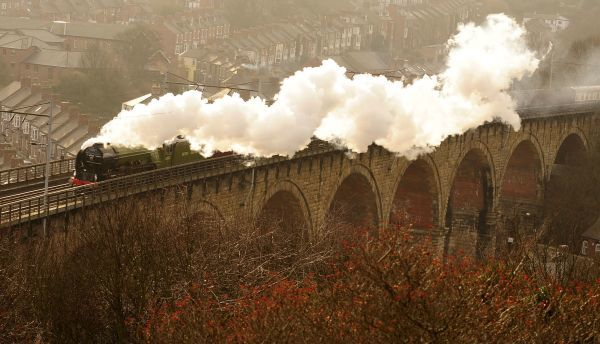 The Tornado Steam Locomotive is seen carrying her first passengers through Durham, northern England January 31, 2009. The last of the Peppercorn class 'A1' steam locomotives was scrapped in 1966, but this new locomotive, number 60163 Tornado
