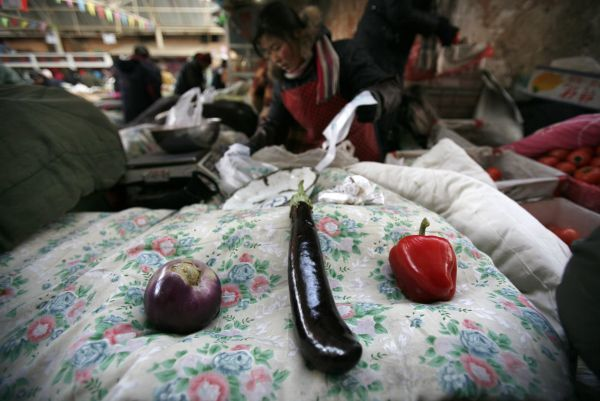 A bell pepper and an eggplant are placed on a quilt that covers vegetables to keep them from freezing in cold weather at an open air market in Beijing January 7, 2010