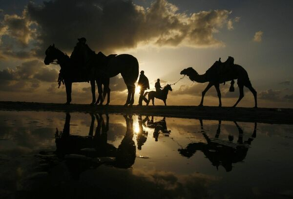 A Palestinian man rides a horse during sunset on the beach of Gaza City May 19, 2010. REUTERS/Mohammed Salem (GAZA - Tags: SOCIETY)