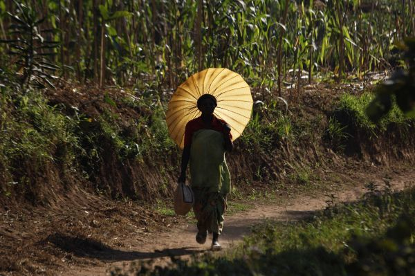 A Rwandan woman carries an umbrella for shade at Mulindi, about 60 km (40 miles) north of the capital Kigali, August 5, 2010