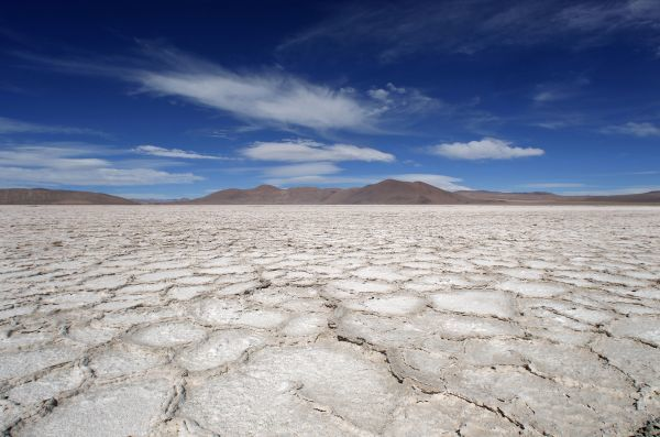 A view of the surface of the salt flat at Salar del Hombre Muerto, which is 4,000 meters (13,123 feet) above sea level and north of the Argentine province of Catamarca August 6, 2010