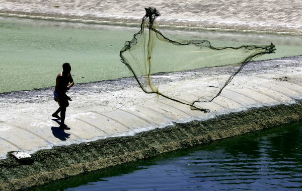 A fisherman throws his net from atop a floating boom into a severely polluted river located on the outskirts of Beijing August 16, 2010. Almost a quarter of China's surface water remains so polluted that it is unfit even for industrial use