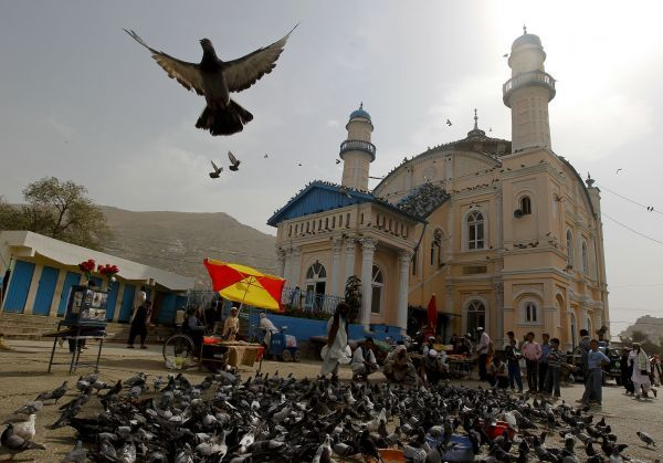 Men feed pigeons outside Shah-e Doh Shamshira mosque during the last week of the Muslim holy month of Ramadan in Kabul August 26, 2011. REUTERS/Omar Sobhani (AFGHANISTAN - Tags: RELIGION ANIMALS)