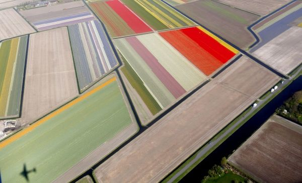 Aerial view of flower fields near the Keukenhof park, also known as the Garden of Europe, in Lisse April 9, 2014. Keukenhof, employing some 30 gardeners, is considered to be the world's largest flower garden displaying millions of flowers every year