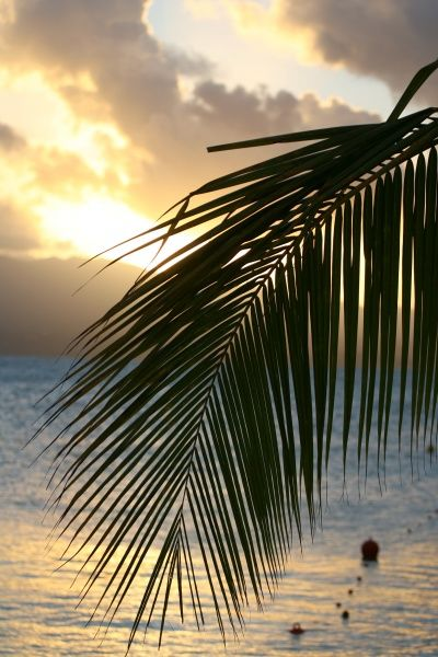 Sunset from a sand beach at Le Gosier resort near Pointe-a-Pitre in the French Caribbean island of Guadeloupe, November 6, 2006. REUTERS/Charles Platiau (FRANCE)