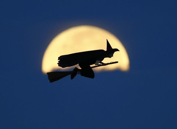 A radio-controlled flying witch makes a test flight past a moon setting into clouds along the pacific ocean in Carlsbad, California in this October 8, 2014 file photo.     The witch is actually a radio controlled airplane powered by an electric motor